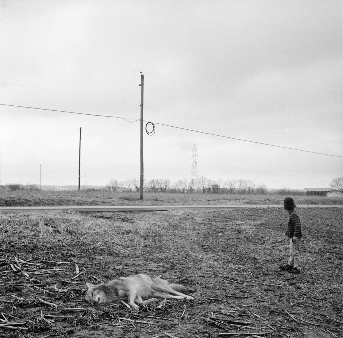 Jesse Lenz /Peter Branson